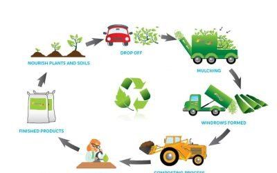 Commercial Composting from Greenwaste: An Infographic